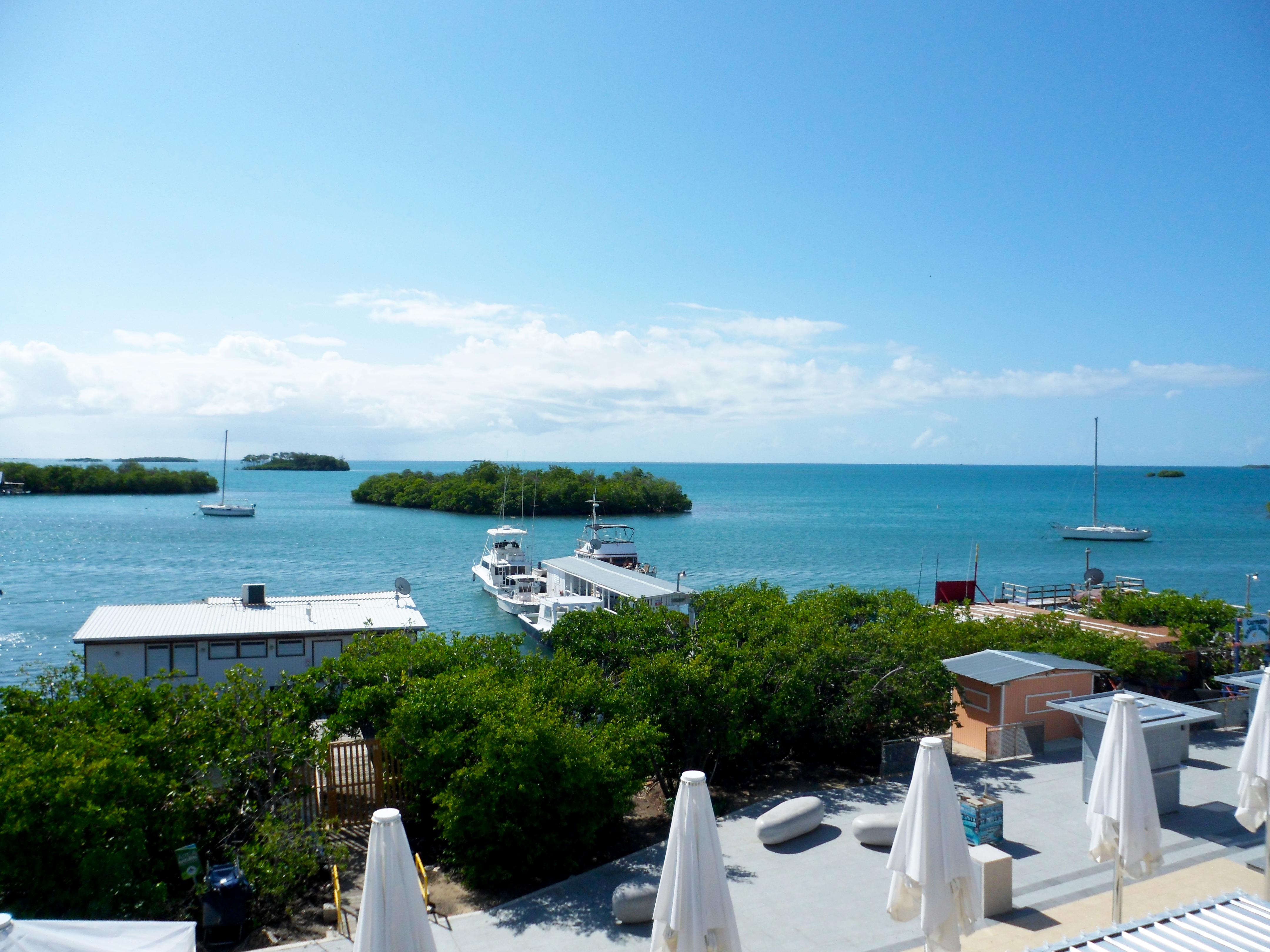 Hotel Turtle Bay Inn Experience Eco Tourism In Puerto Rico